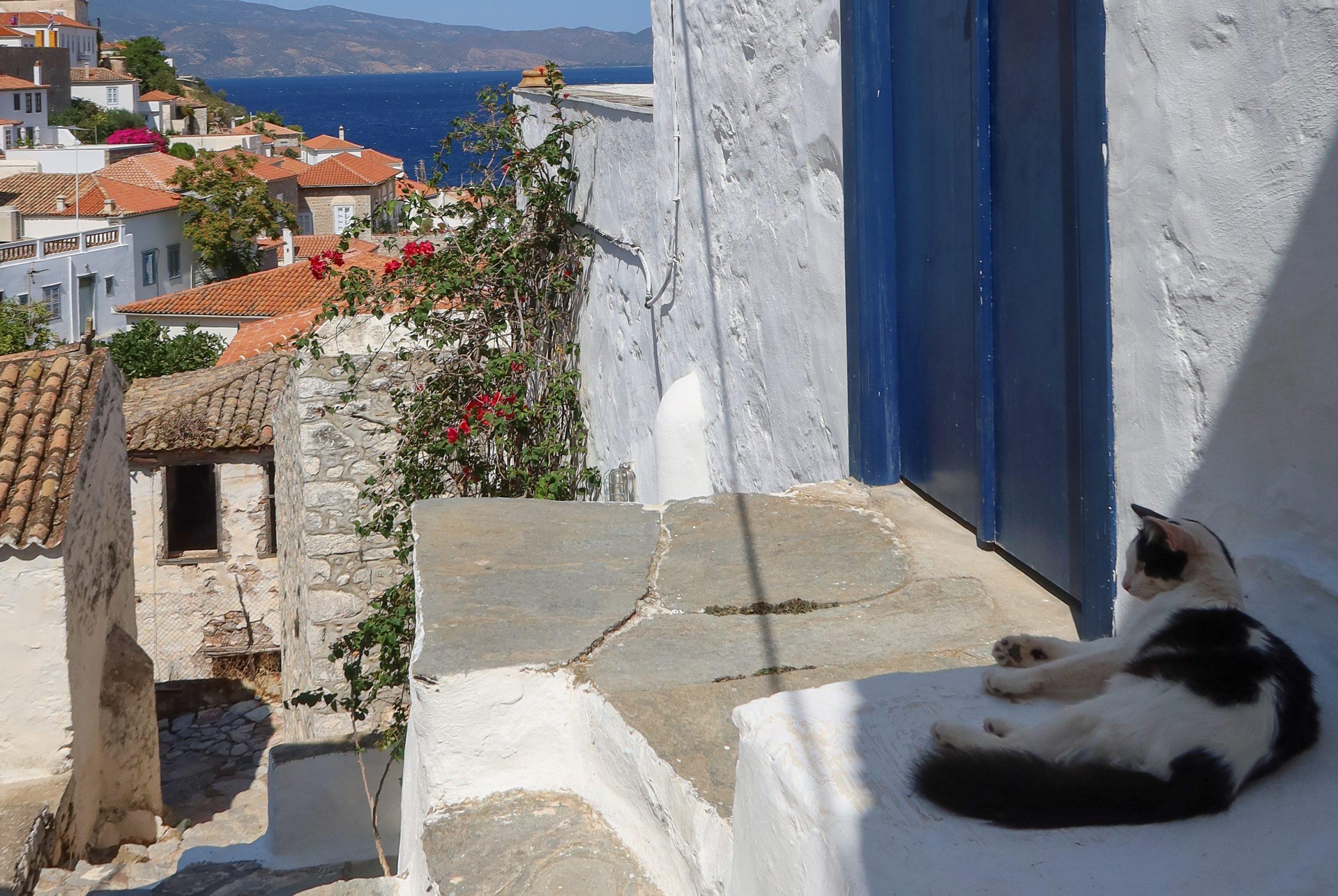 [:sv]På Hydra klättrar de smala gatorna uppför bergssluttningen.[:]
